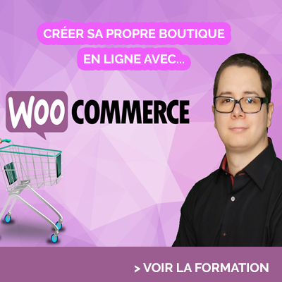 formation woocommerce