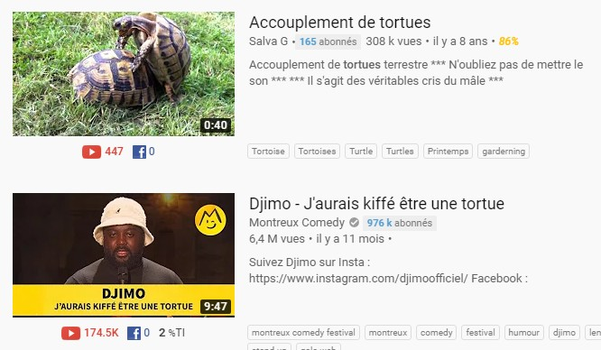 vidéos bizares youtube
