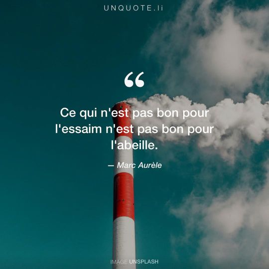 citation stoique